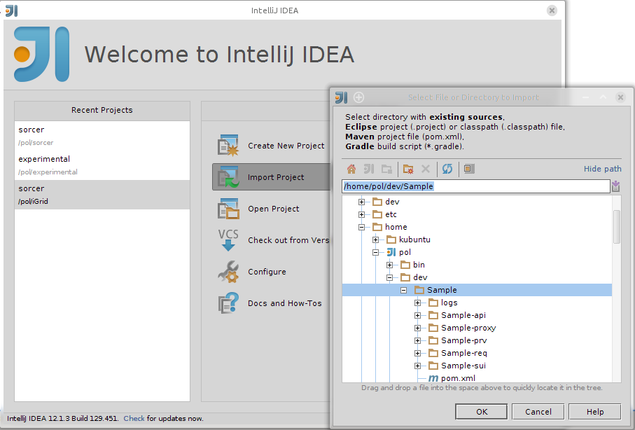 importing project into Idea